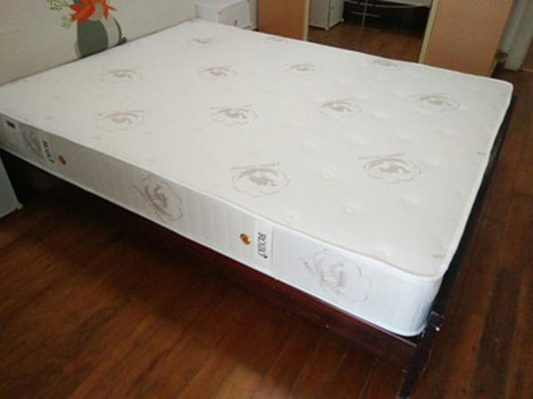 Pocket Spring Mattress Case Studies
