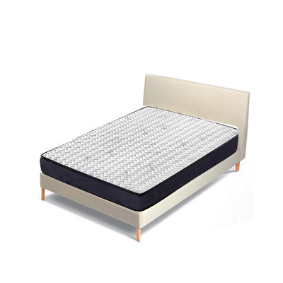 23 cm Height Low-carbon Continuous Spring Tight Top Roll Up Mattress for student hotel